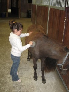 Girl caring for a horse - What to Look for in a Summer Camp for Spectrum Kids