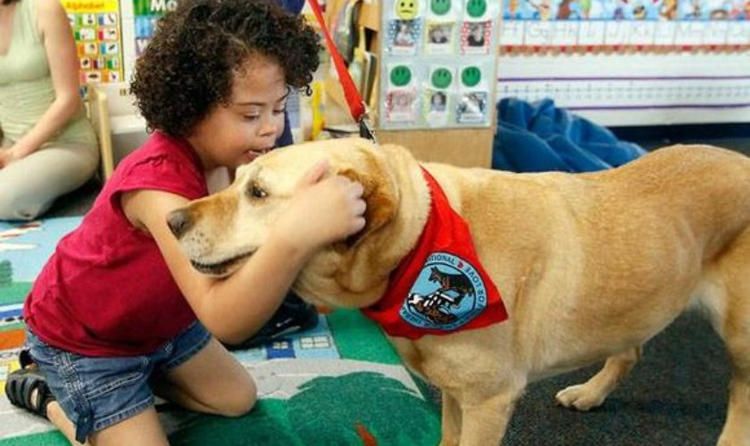 Nine Ways How Special Dogs are Helping Children with Special Needs