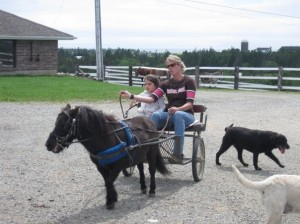 Child in horse carriage - Special needs vacations allow for some much needed relaxation for the parents, is a bonding experience for the family and broaden horizons and experience.