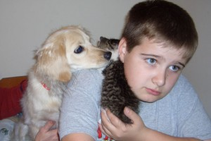 Teen playing with pets - using self-reward when completing part of homework