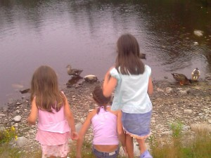 Kids watching ducks - Know Water Safety Rules: The Ultimate Life Skill