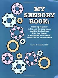 My Sensory Book: Working Together to Explore Sensory Issues and the Big Feelings They Can Cause: A Workbook for Parents, Professionals, and Children by Lauren H. Kerstein, MSW