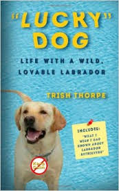 """""""Lucky"""" Dog: Life with A Wild, Lovable Labrador Paperback – October 17, 2013 by Trish Thorpe"""