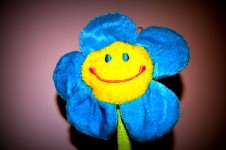 Artificial Flower: Pretend Sensory Gardens to Stimulate the Senses