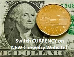 SWITCH CURRENCY – Feature of NEW KidCompanions Chewelry & SentioCHEWS Website
